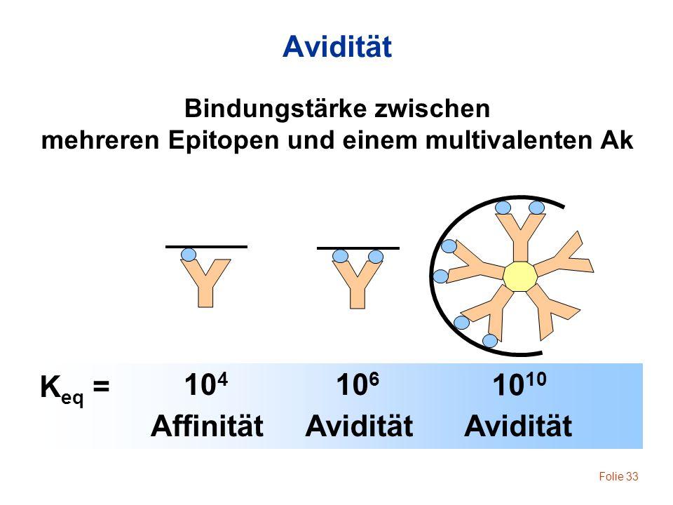 Folie 33 K eq = 10 4 Affinität 10 6 Avidität 10 Bindungstärke zwischen mehreren Epitopen und einem multivalenten Ak