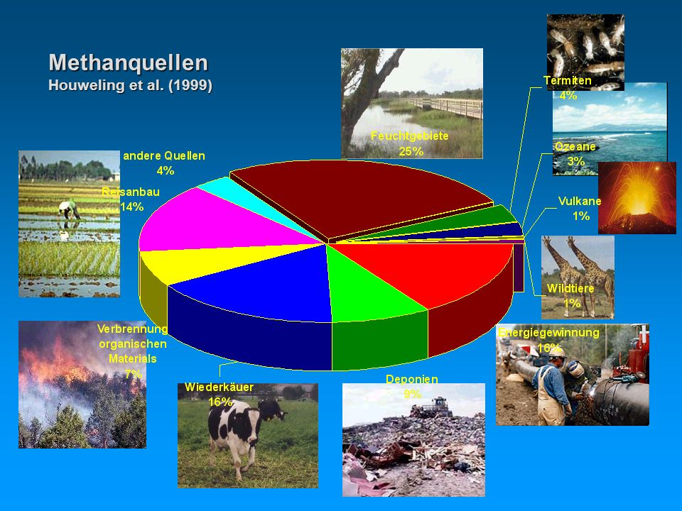 Methanquellen Houweling et al. (1999)