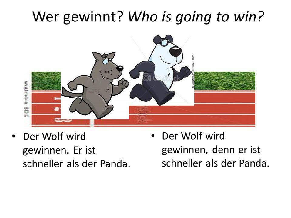 der Pinguin der Tiger Wer gewinnt? Who is going to win?