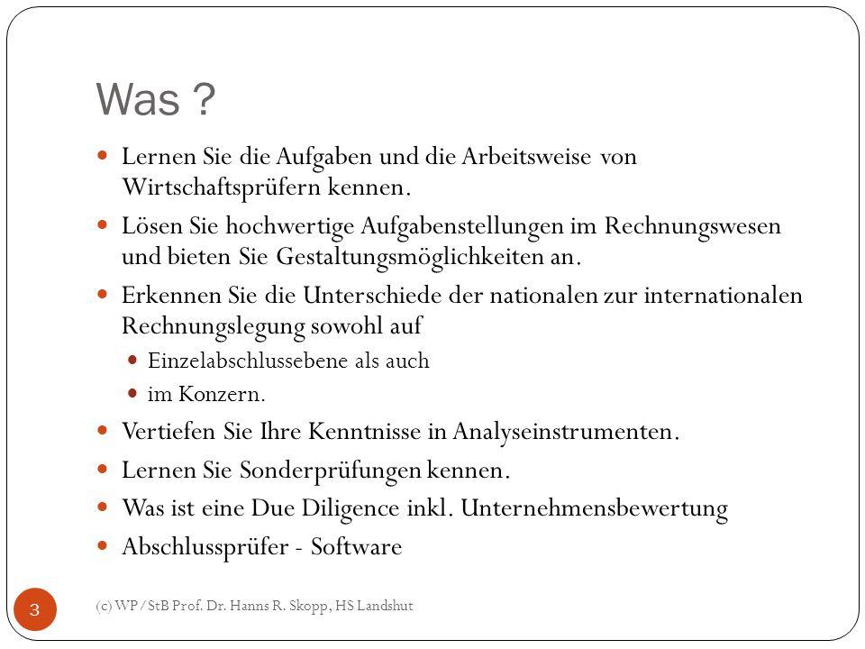 Was ? (c) WP/StB Prof. Dr. Hanns R. Skopp, HS Landshut 3 Lernen Sie die Aufgaben und die Arbeitsweise von Wirtschaftsprüfern kennen. Lösen Sie hochwer