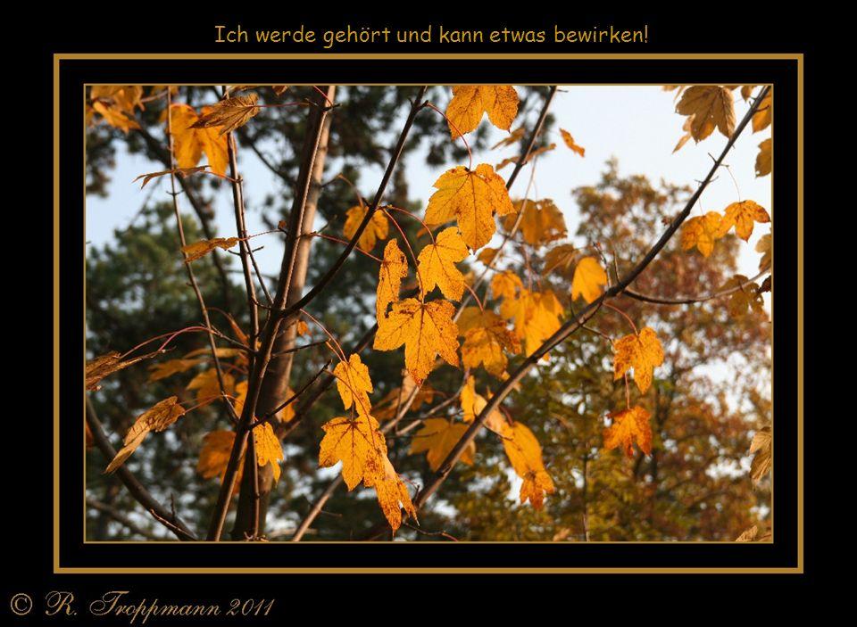 Vergessen Sie gerade in der Herbst- und Winterzeit nicht die Sonnenstunden zu nutzen und Sonne zu tanken. Ein Sonnentag im Herbst ist wunderschön und
