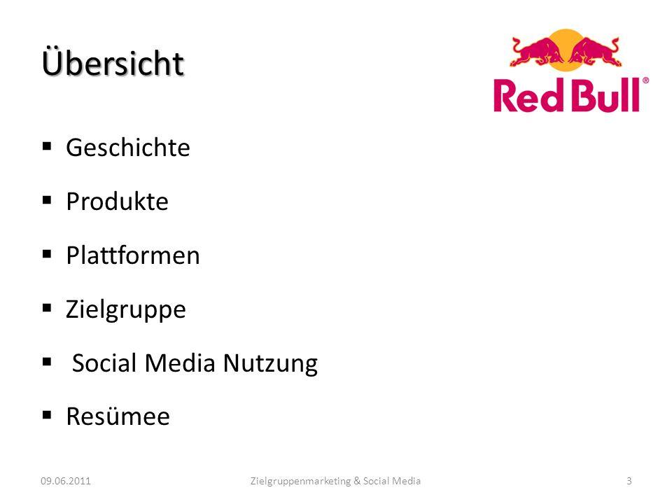 Geschichte Produkte Plattformen Zielgruppe Social Media Nutzung Resümee 09.06.2011Zielgruppenmarketing & Social Media3 Übersicht