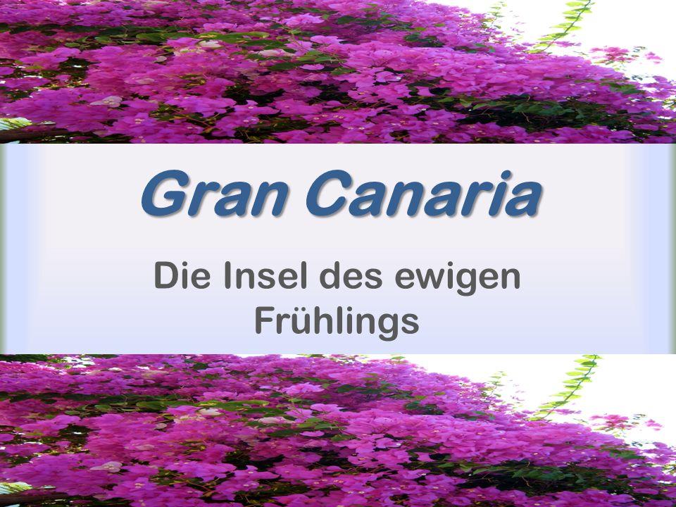 Gran Canaria Die Insel des ewigen Frühlings