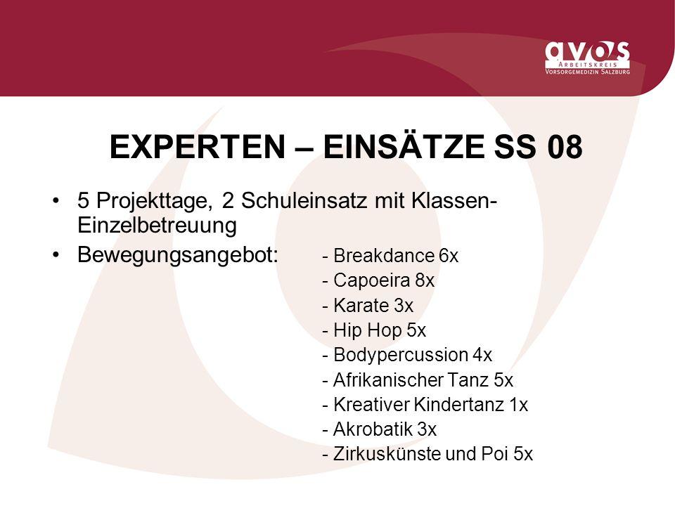 EXPERTEN – EINSÄTZE SS 08 5 Projekttage, 2 Schuleinsatz mit Klassen- Einzelbetreuung Bewegungsangebot: - Breakdance 6x - Capoeira 8x - Karate 3x - Hip