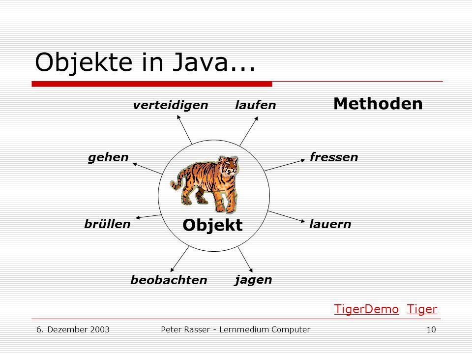 6.Dezember 2003Peter Rasser - Lernmedium Computer10 Objekte in Java...