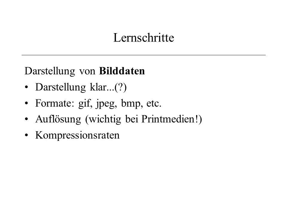 Lernschritte Darstellung von Bilddaten Darstellung klar...(?) Formate: gif, jpeg, bmp, etc.