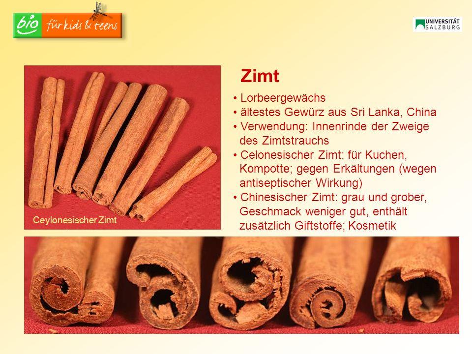 Ceylonesischer Zimt Zimt Lorbeergewächs ältestes Gewürz aus Sri Lanka, China Verwendung: Innenrinde der Zweige des Zimtstrauchs Celonesischer Zimt: fü