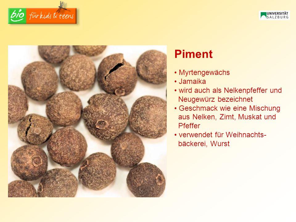 Piment Myrtengewächs Jamaika wird auch als Nelkenpfeffer und Neugewürz bezeichnet Geschmack wie eine Mischung aus Nelken, Zimt, Muskat und Pfeffer ver