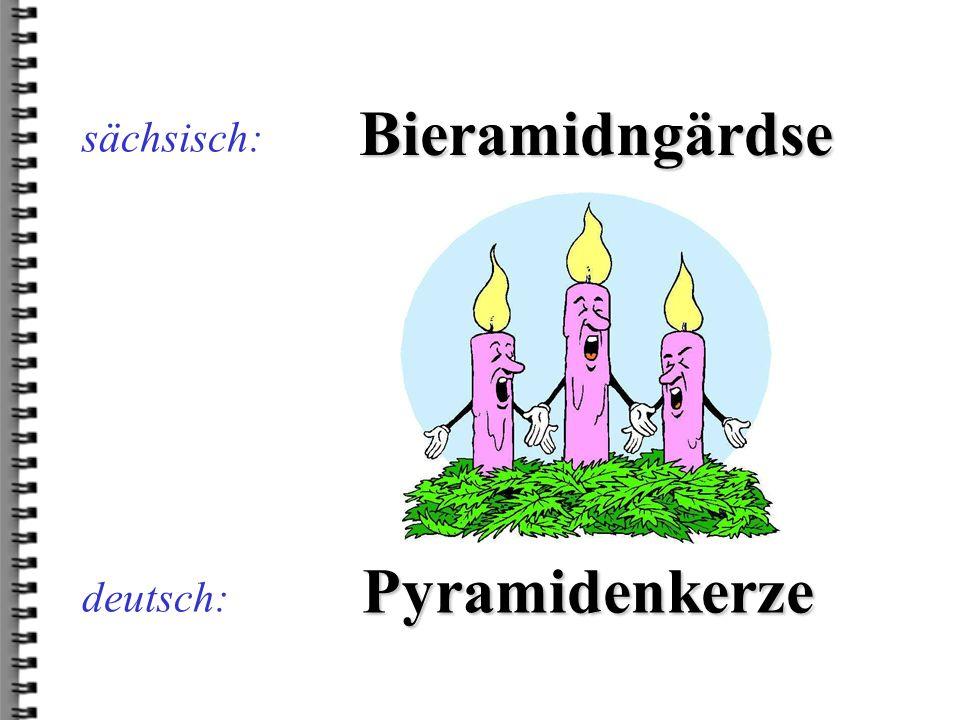 deutsch: Bieramidngärdse sächsisch: Pyramidenkerze