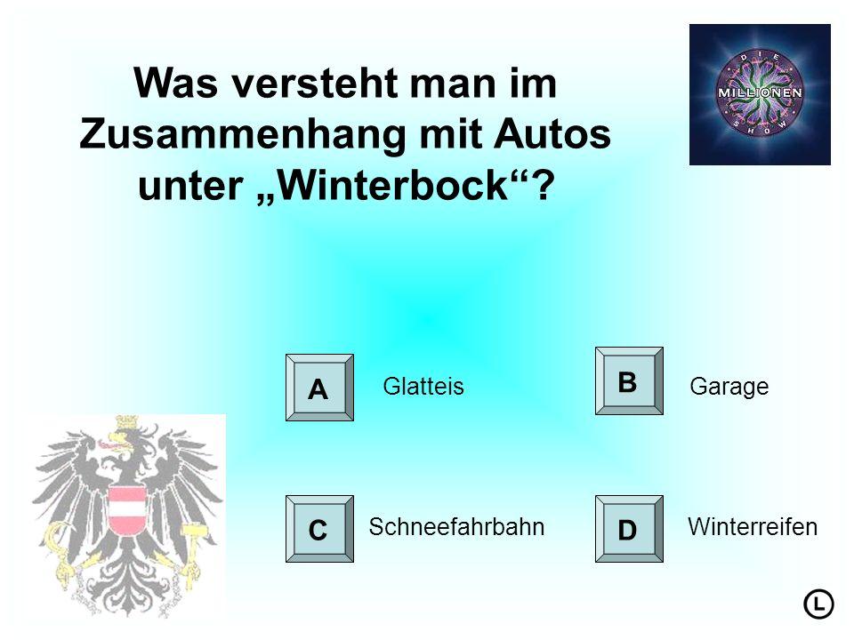 Was versteht man im Zusammenhang mit Autos unter Winterbock.