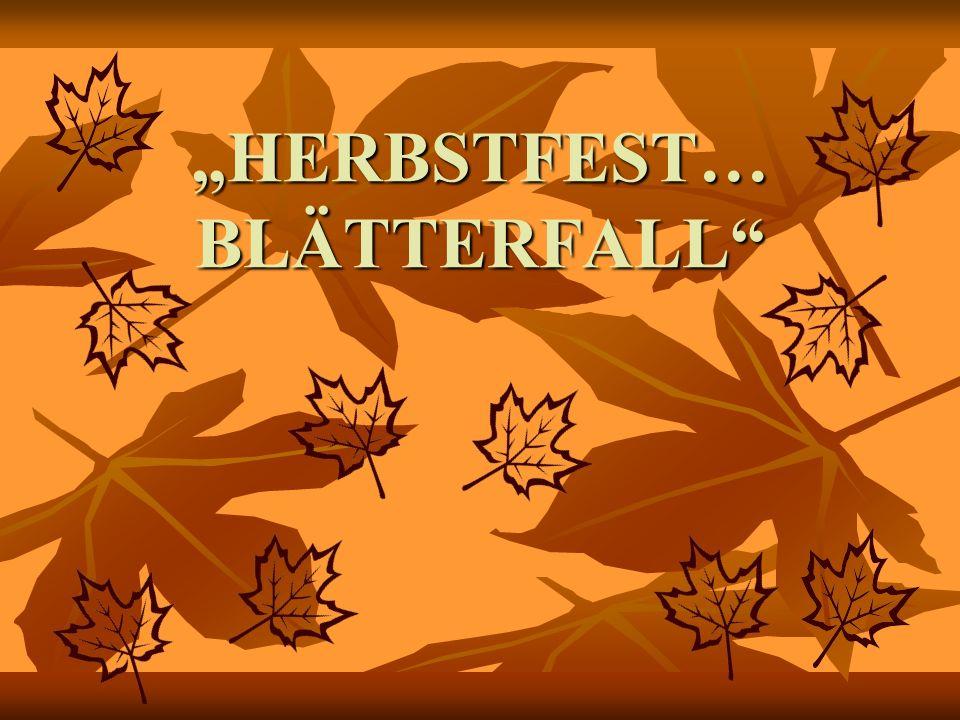 HERBSTFEST… BLÄTTERFALL
