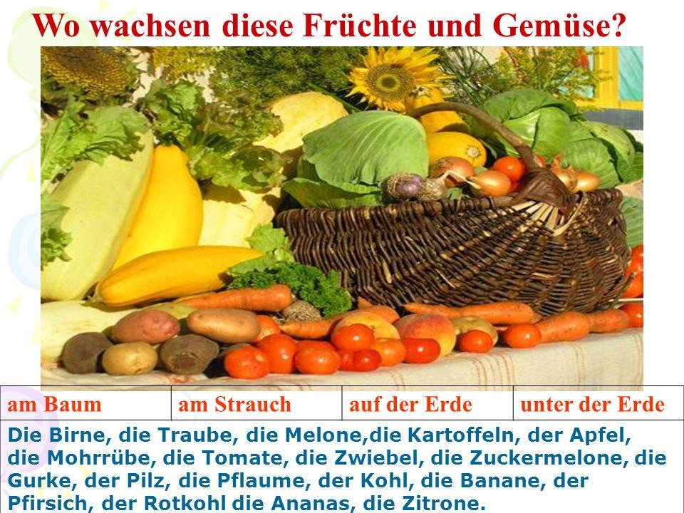 Wo wachsen diese Früchte und Gemüse? am Baumam Strauchauf der Erdeunter der Erde Die Birne, die Traube, die Melone,die Kartoffeln, der Apfel, die Mohr