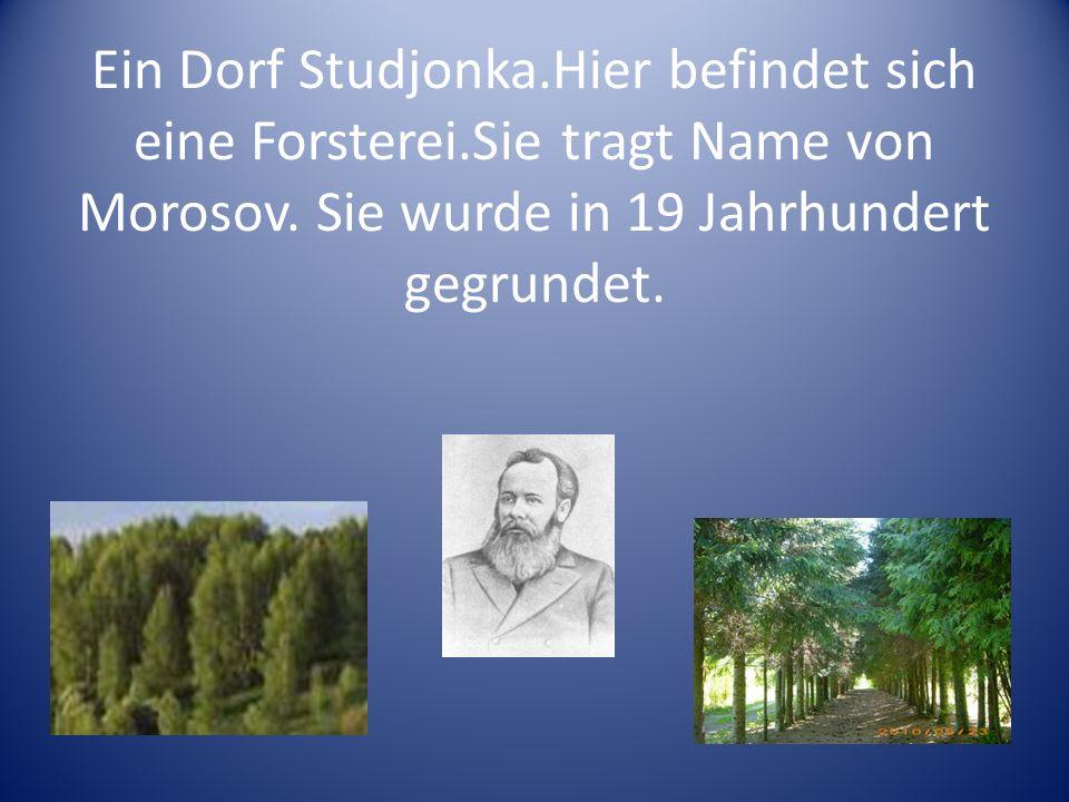 Ein Dorf Studjonka.Hier befindet sich eine Forsterei.Sie tragt Name von Morosov. Sie wurde in 19 Jahrhundert gegrundet.