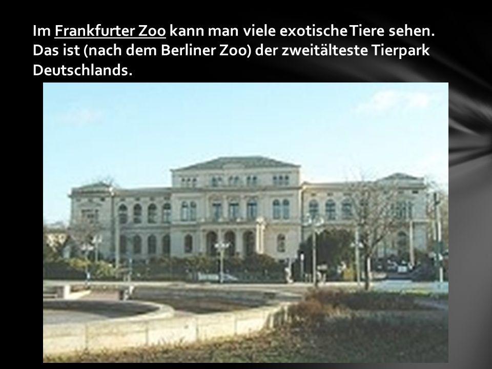 Im Frankfurter Zoo kann man viele exotische Tiere sehen.