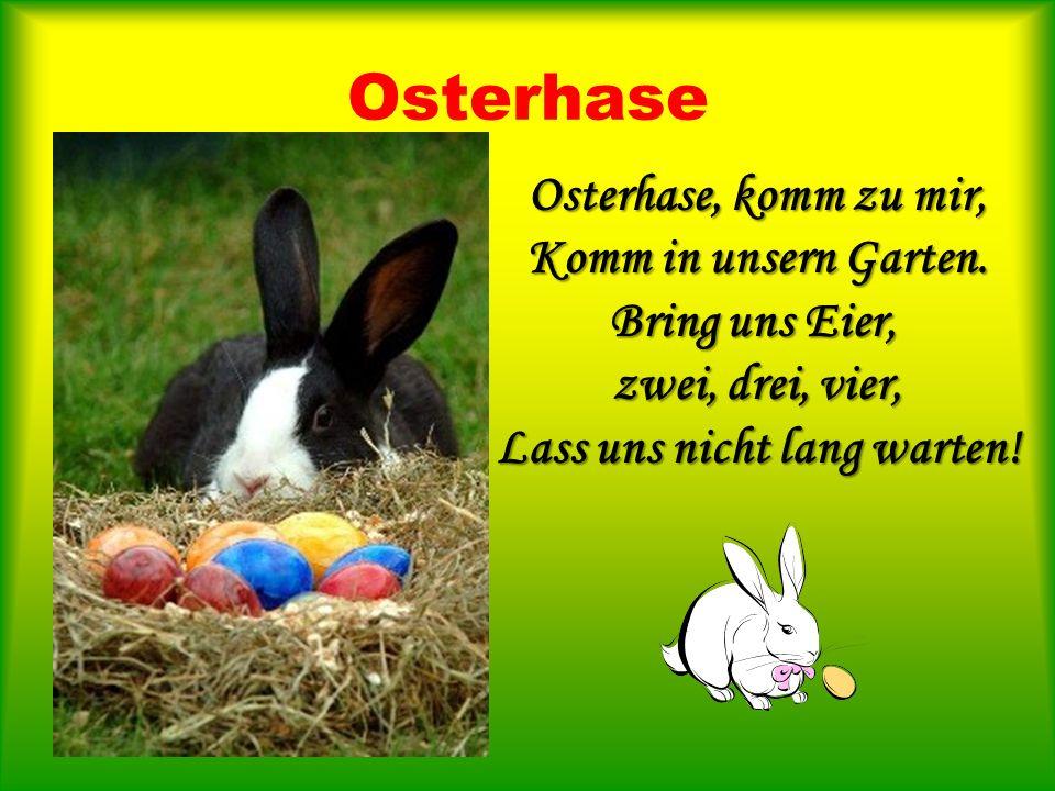 Osterhase Osterhase, komm zu mir, Komm in unsern Garten. Bring uns Eier, zwei, drei, vier, Lass uns nicht lang warten!
