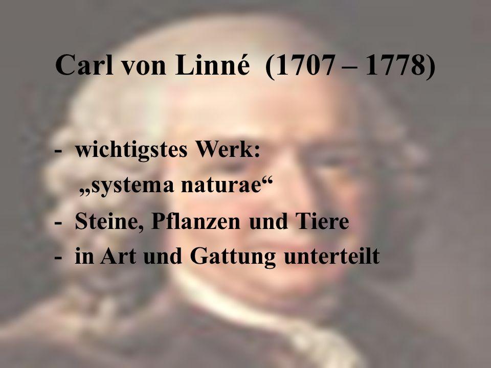 Carl von Linné (1707 – 1778) - in Südschweden geboren - Vater war Geistlicher - Doktor der Medizin - Adelstitel