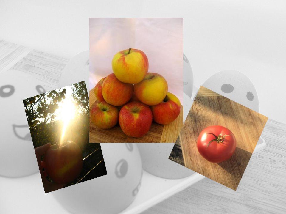 Hülsenfrüchte und Nüsse Hülsenfrüchte und Nüsse versorgen den Körper mit Eiweiß, Vitaminen und Mineralien.