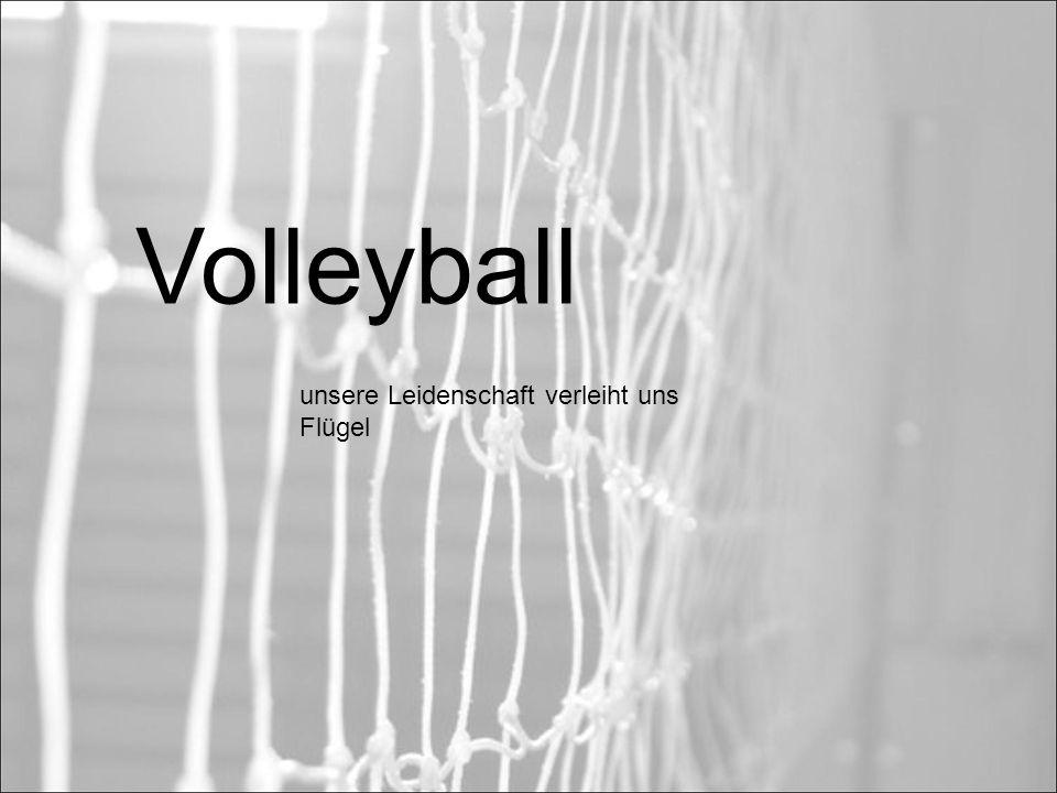 Volleyball - Volleyball ist ein Mannschaftssport.