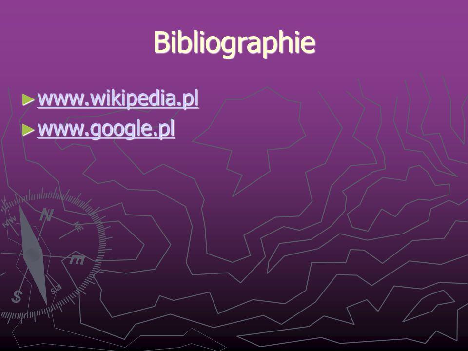 Bibliographie www.wikipedia.pl www.wikipedia.pl www.wikipedia.pl www.google.pl www.google.pl www.google.pl