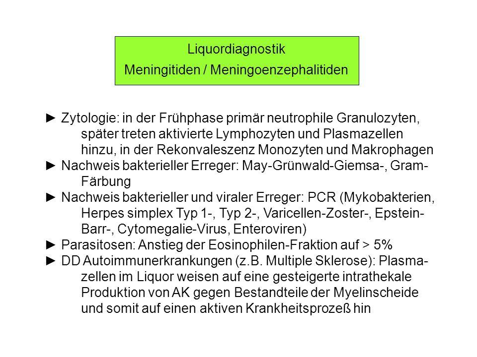 Liquordiagnostik Meningitiden / Meningoenzephalitiden Zytologie: in der Frühphase primär neutrophile Granulozyten, später treten aktivierte Lymphozyte