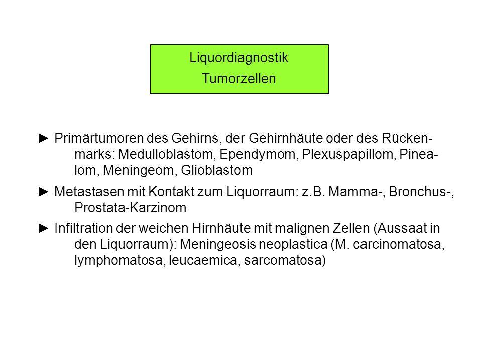 Liquordiagnostik Tumorzellen Primärtumoren des Gehirns, der Gehirnhäute oder des Rücken- marks: Medulloblastom, Ependymom, Plexuspapillom, Pinea- lom,