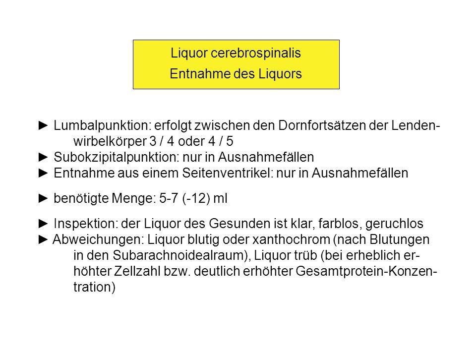 Liquor cerebrospinalis Entnahme des Liquors Lumbalpunktion: erfolgt zwischen den Dornfortsätzen der Lenden- wirbelkörper 3 / 4 oder 4 / 5 Subokzipital