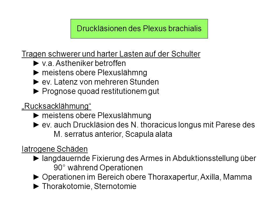 Druckläsionen des Plexus brachialis Tragen schwerer und harter Lasten auf der Schulter v.a. Astheniker betroffen meistens obere Plexuslähmng ev. Laten