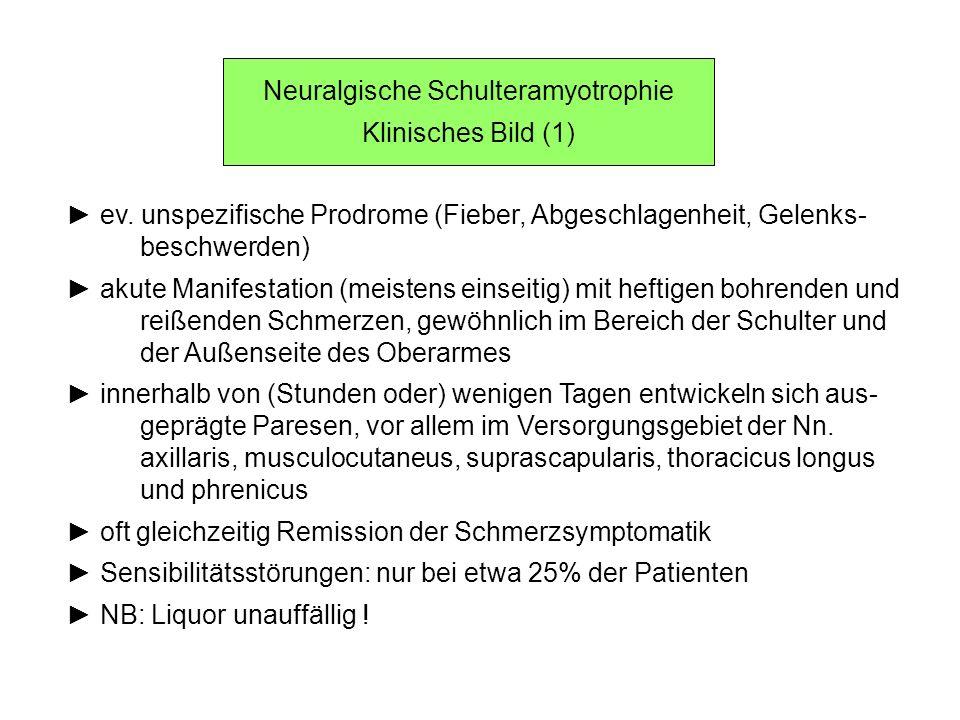 Neuralgische Schulteramyotrophie Klinisches Bild (1) ev. unspezifische Prodrome (Fieber, Abgeschlagenheit, Gelenks- beschwerden) akute Manifestation (