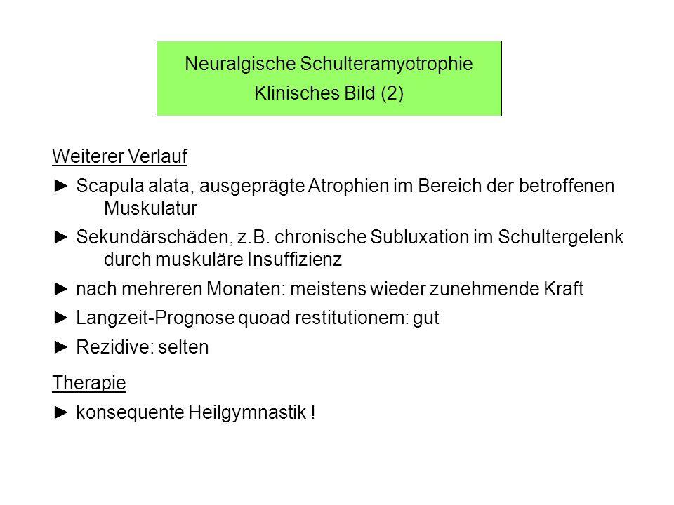 Neuralgische Schulteramyotrophie Klinisches Bild (2) Weiterer Verlauf Scapula alata, ausgeprägte Atrophien im Bereich der betroffenen Muskulatur Sekun