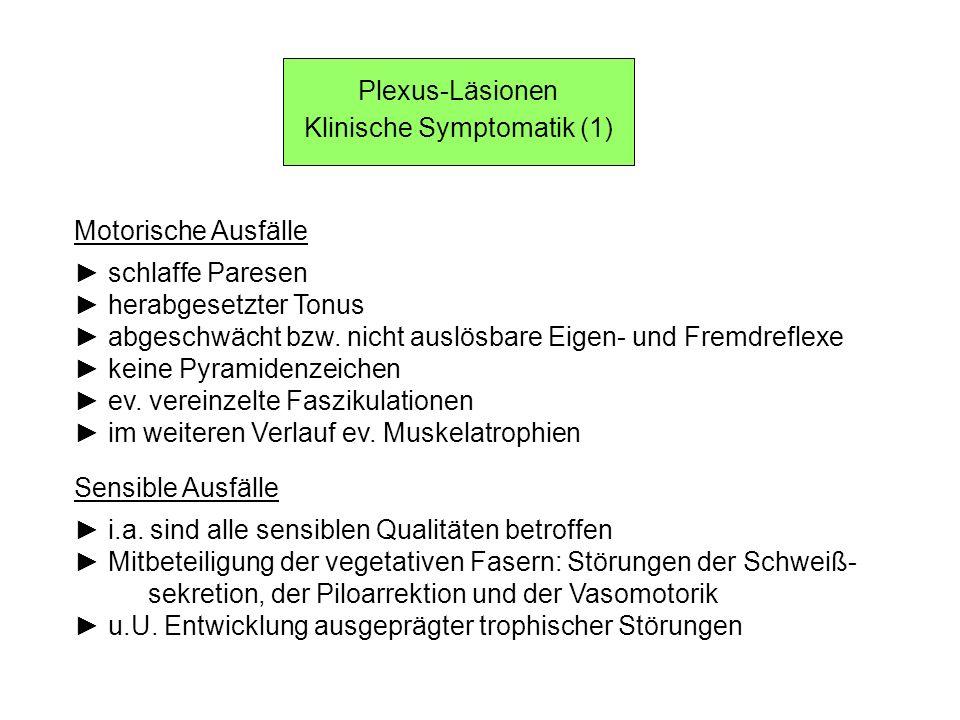 Klinische Symptomatik (1) Motorische Ausfälle schlaffe Paresen herabgesetzter Tonus abgeschwächt bzw. nicht auslösbare Eigen- und Fremdreflexe keine P
