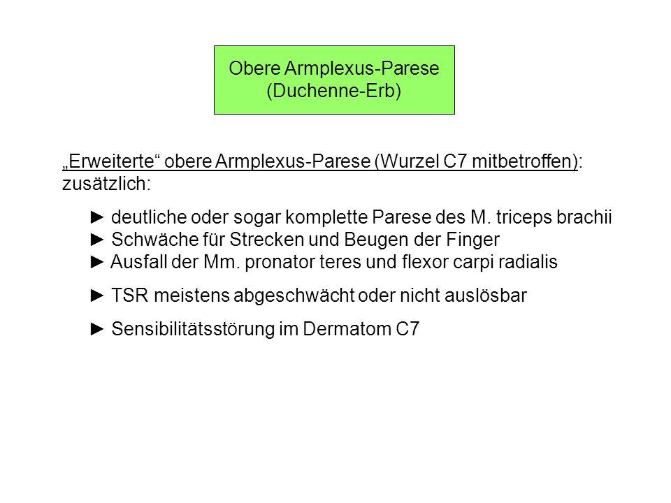 Obere Armplexus-Parese (Duchenne-Erb) Erweiterte obere Armplexus-Parese (Wurzel C7 mitbetroffen): zusätzlich: deutliche oder sogar komplette Parese de