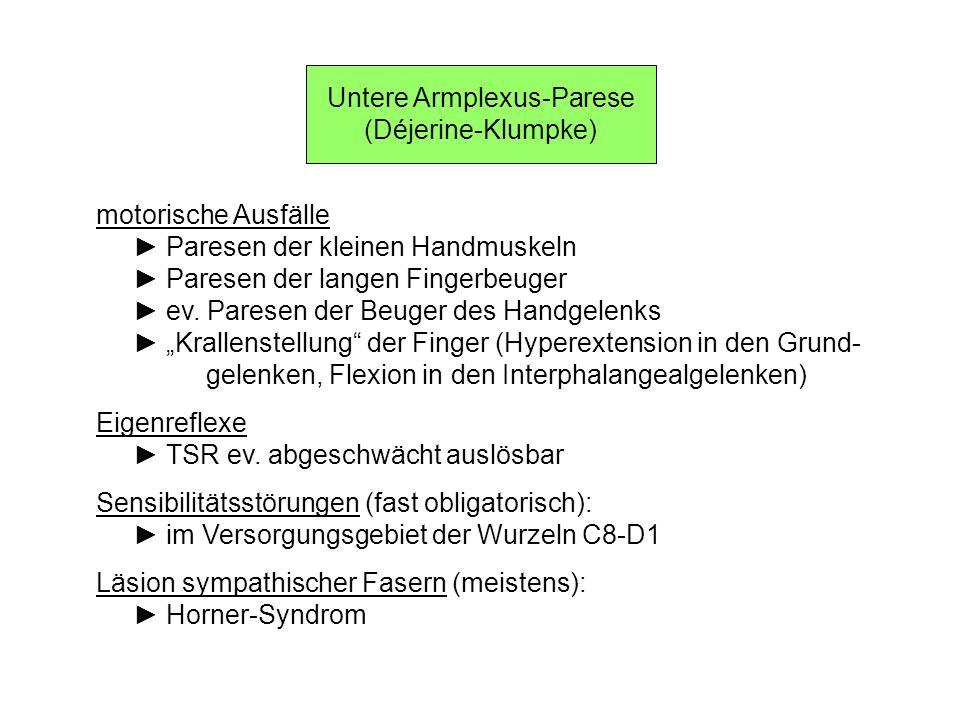 Untere Armplexus-Parese (Déjerine-Klumpke) motorische Ausfälle Paresen der kleinen Handmuskeln Paresen der langen Fingerbeuger ev. Paresen der Beuger