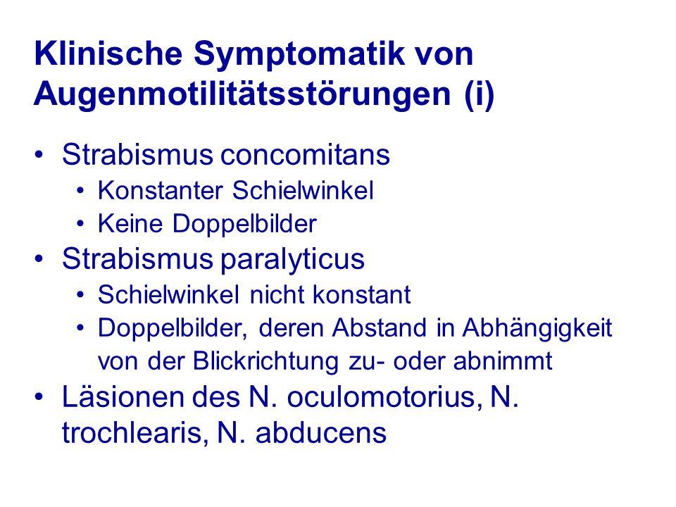 Klinische Symptomatik von Augenmotilitätsstörungen (i) Strabismus concomitans Konstanter Schielwinkel Keine Doppelbilder Strabismus paralyticus Schiel