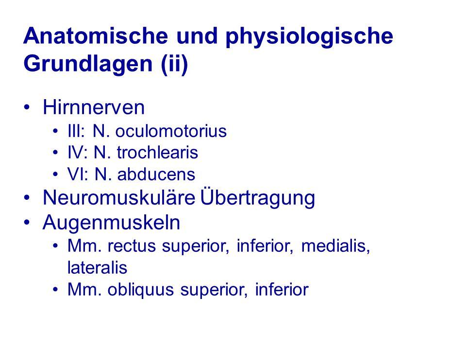 Anatomische und physiologische Grundlagen (ii) Hirnnerven III: N. oculomotorius IV: N. trochlearis VI: N. abducens Neuromuskuläre Übertragung Augenmus