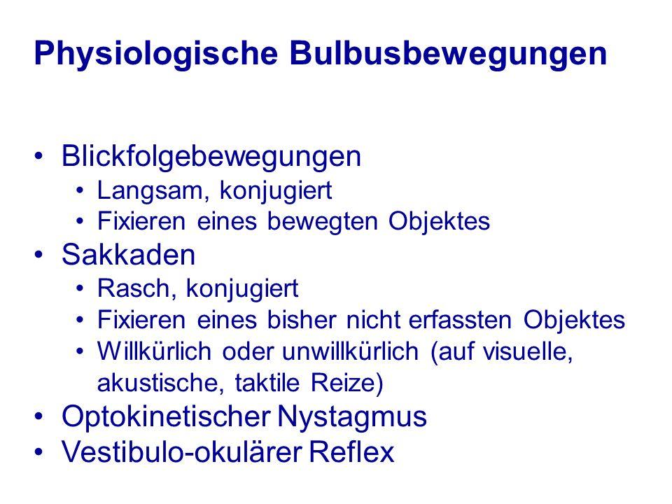 Klinische Prüfung (i) Stellung der Bulbi in Ruhe (Primärposition) Abweichung eines Bulbus.