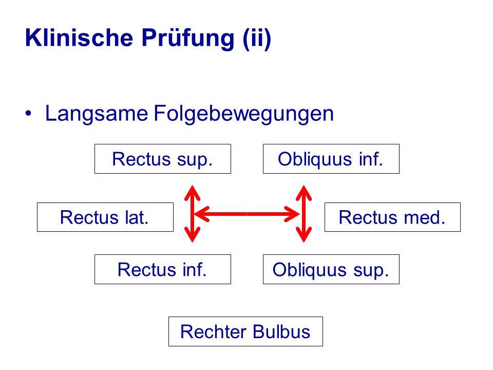 Klinische Prüfung (ii) Langsame Folgebewegungen Rectus lat. Rectus sup. Rectus inf. Obliquus inf. Obliquus sup. Rectus med. Rechter Bulbus