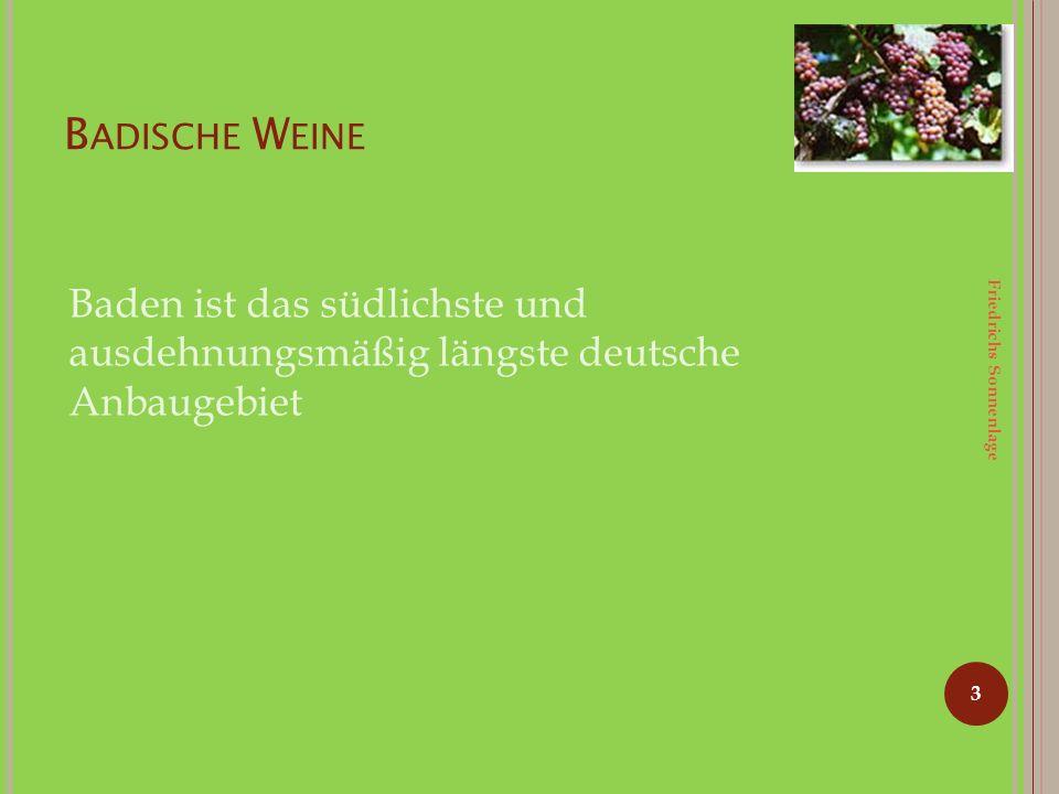 B ADISCHE W EINE 3 Baden ist das südlichste und ausdehnungsmäßig längste deutsche Anbaugebiet Friedrichs Sonnenlage
