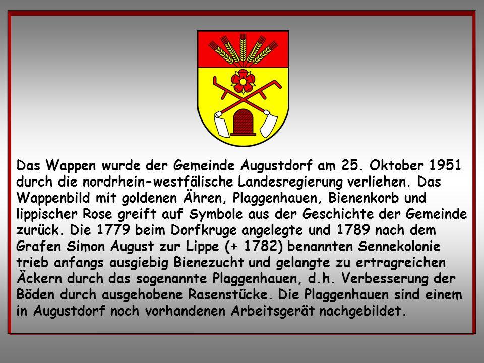 Das Wappen wurde der Gemeinde Augustdorf am 25. Oktober 1951 durch die nordrhein-westfälische Landesregierung verliehen. Das Wappenbild mit goldenen Ä