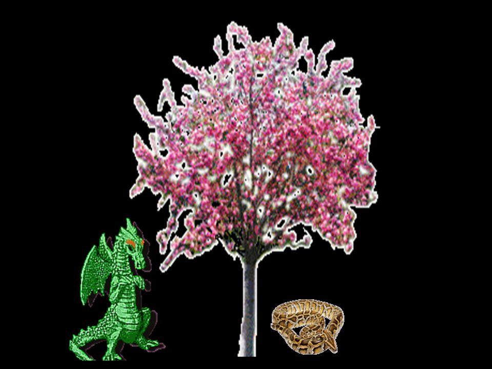 Hera besitzte im Westen der Welt einen Garten, in dem magische Äpfel am Baum des Lebens wuchsen. Sie werden von einer ihr heiligen Schlange und dem Dr