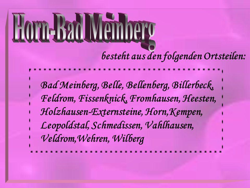 besteht aus den folgenden Ortsteilen: Bad Meinberg, Belle, Bellenberg, Billerbeck, Feldrom, Fissenknick, Fromhausen, Heesten, Holzhausen-Externsteine,