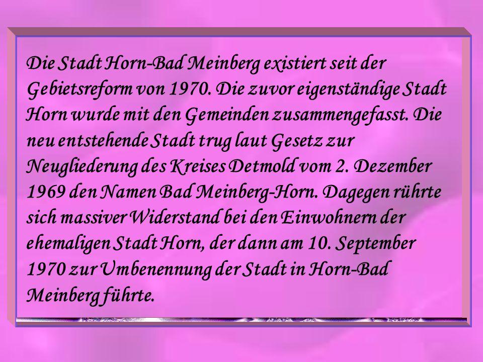 Die Stadt Horn-Bad Meinberg existiert seit der Gebietsreform von 1970. Die zuvor eigenständige Stadt Horn wurde mit den Gemeinden zusammengefasst. Die