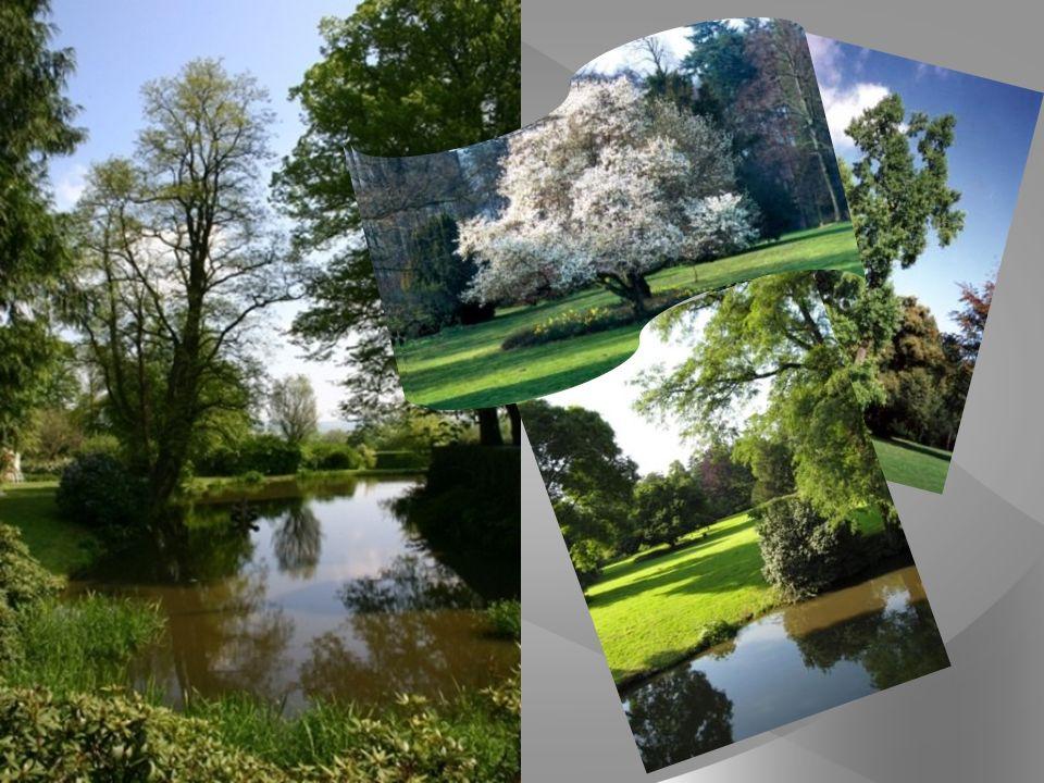 Durch seine außergewöhnlich vielfältige und seltene Botanik und mit seiner einladenden Größe von über drei Hektar, zählt der Schlosspark zu den ökologischen Einzigartigkeiten der Region.