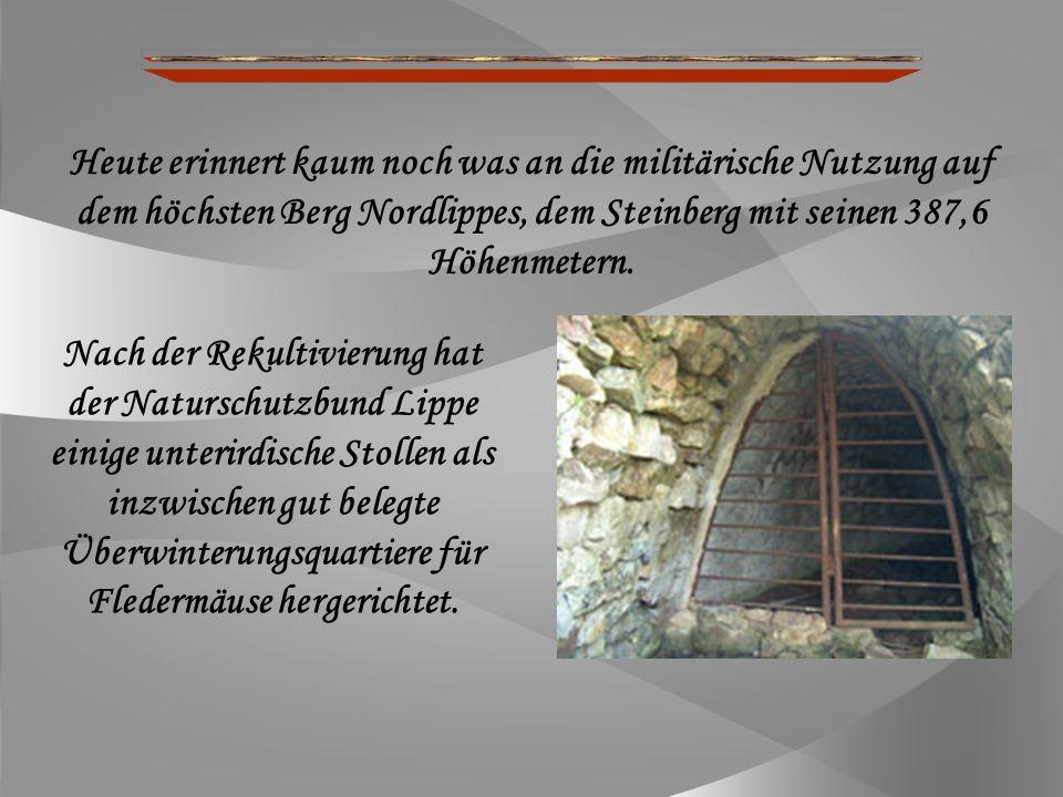 Ehemalige NATO-Station auf dem Steinberg Seit 1988 das Militär hier abzog und das Areal vom Naturschutzbund-Lippe (NABU) übernommen wurde, wird das Gelände so nach und nach wieder von der Natur zurück erobert.