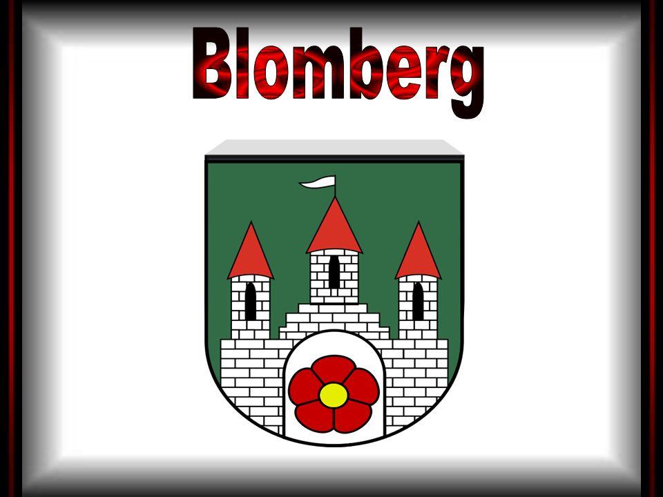 Das Wappenbild fußt auf den Siegeldarstellungen der Stadt Blomberg, die seit dem 13.