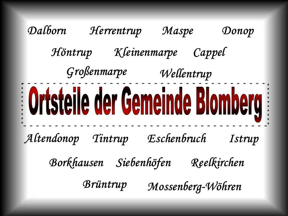 Gerhard Schröder, Bundeskanzler a.D., geboren in Mossenberg-Wöhren Frank-Walter Steinmeier, deutscher Vizekanzler besuchte das Blomberger Gymnasium