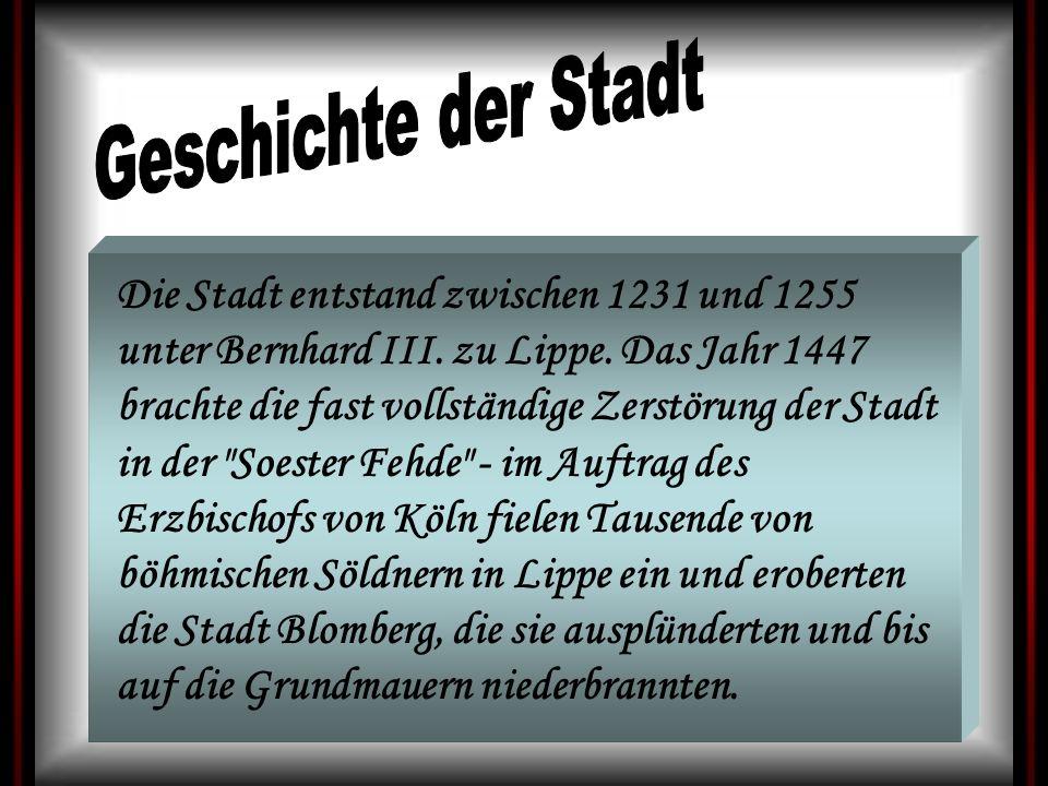 Die Stadt entstand zwischen 1231 und 1255 unter Bernhard III. zu Lippe. Das Jahr 1447 brachte die fast vollständige Zerstörung der Stadt in der
