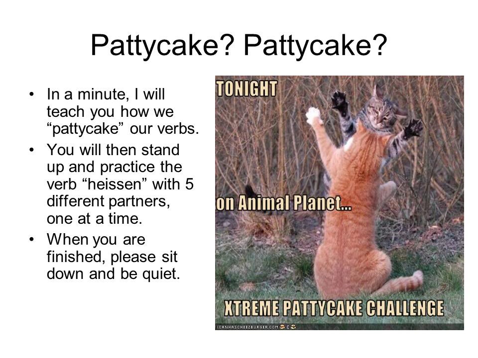 Pattycake. In a minute, I will teach you how we pattycake our verbs.