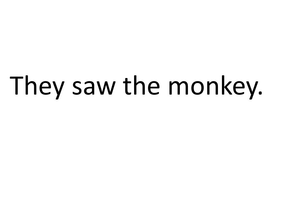They saw the monkey.