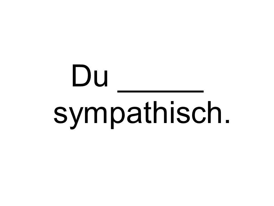 Du _____ sympathisch.