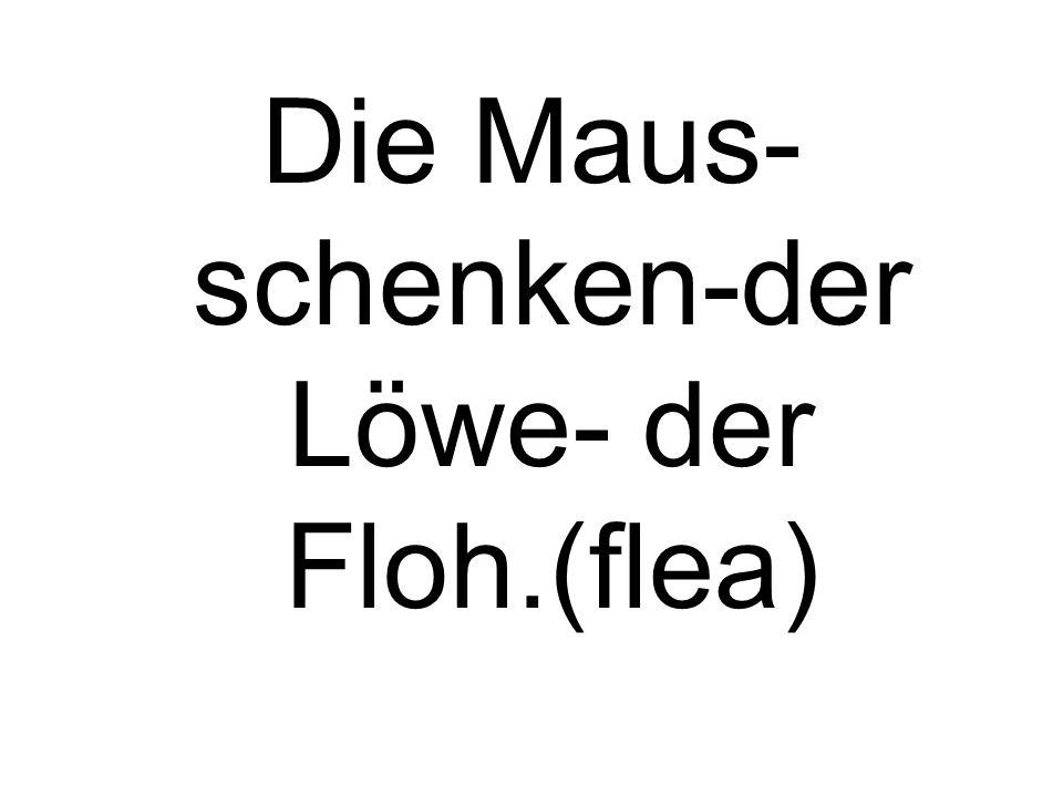 Die Maus- schenken-der Löwe- der Floh.(flea)